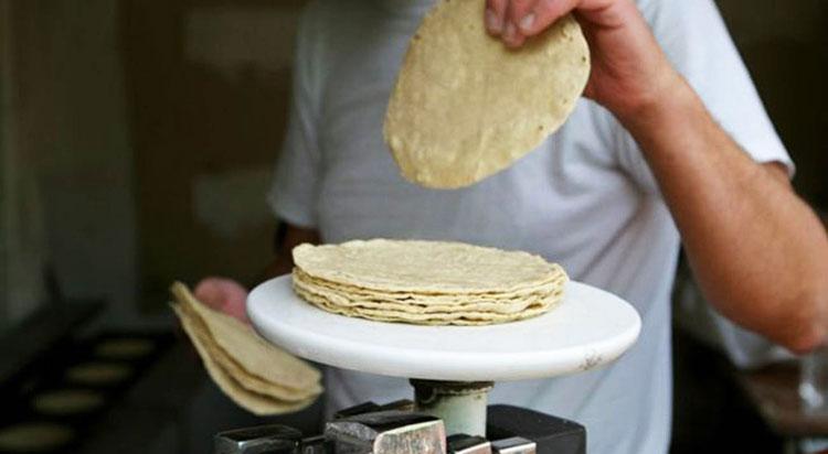 Implementarán programa de tortilla subsidiada