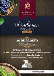 25 agosto Vendimia Potosina