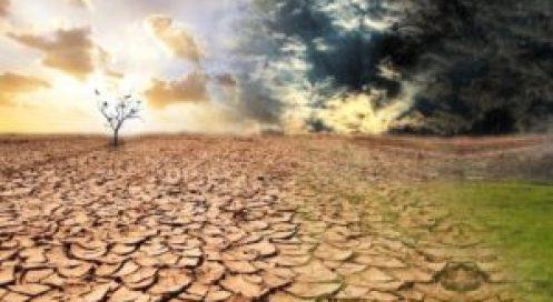 El cambio climático es una realidad