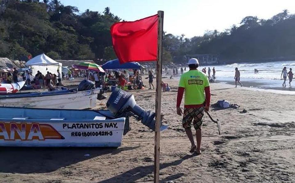 Reportan ataques de serpientes marinas a turistas en playa de Nayarit