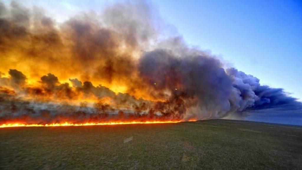 Arrasa el fuego grandes extensiones de la Selva del Amazonas #PrayForAmazonia