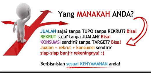 Marketing Plan Agen Infinesse Indonesia