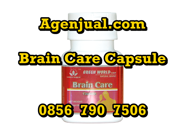 Agen Brain Care Capsule Tegal