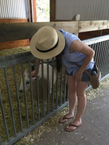 We had to stop & pet every animal