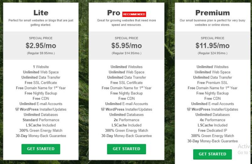 GG WP Hosting Plans - GreenGeeks Web Hosting Review