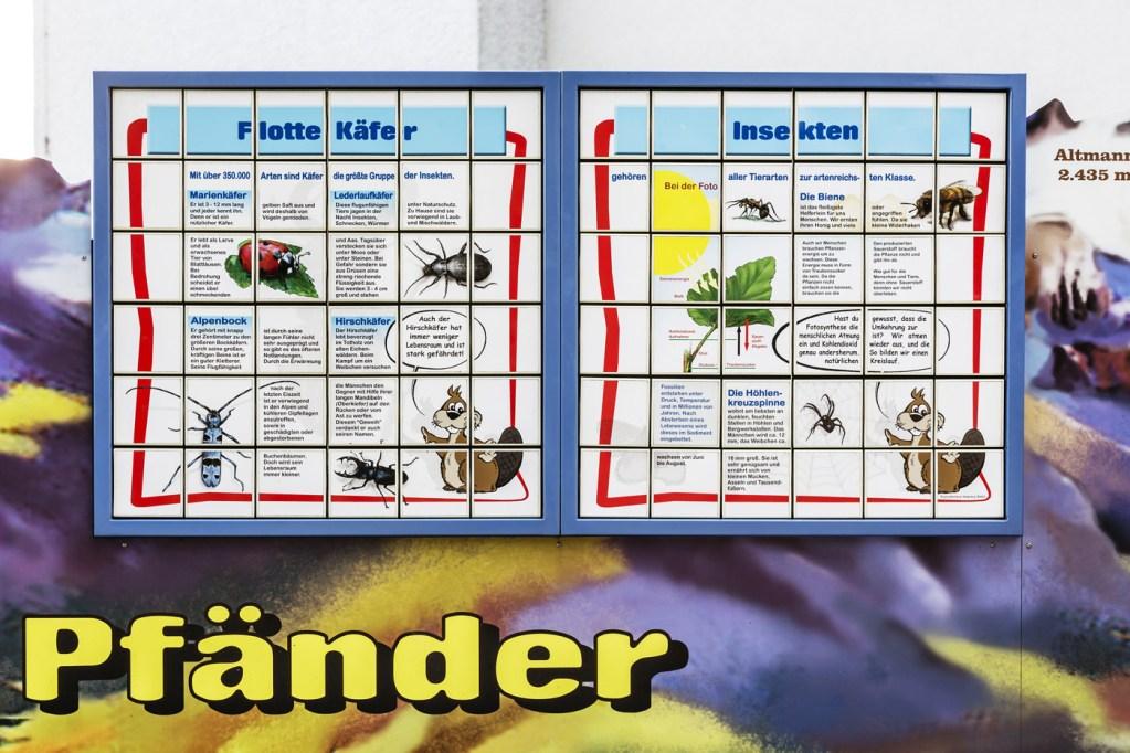 Kinder-Bergwelt auf dem Pfänder, Erlebniswelten, Kindererlebniswelten, Spielmodule, Dreh-Puzzle, Flotte Käfer Insekten, Agentur Ravensburger