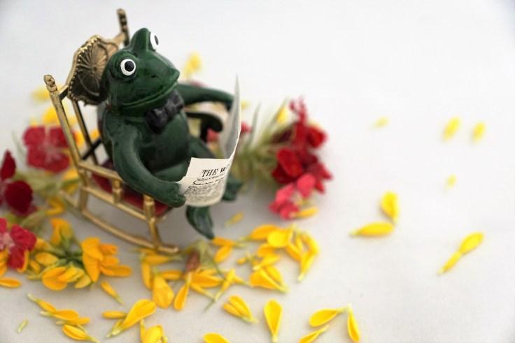 frog-2422427_1920.jpg