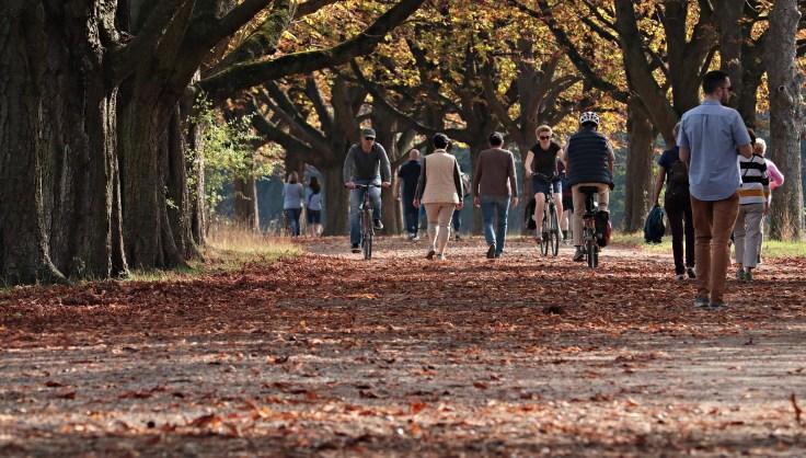 walk-3731094_1920.jpg