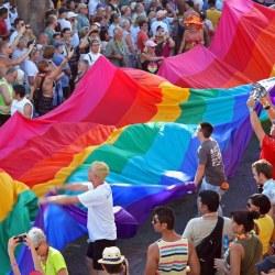 """酷新闻:""""婚姻之战""""紧急动员 反对专法 同志们一起团结站出来!"""