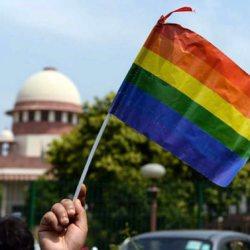 酷新聞:印度最高法院 解禁同性性行為 同志喜極而泣