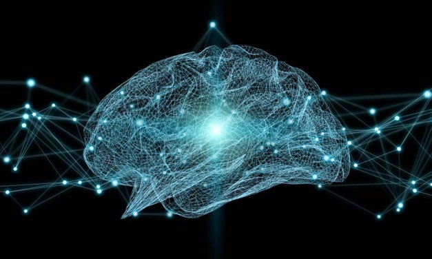 Researchers find algorithm for large-scale brain simulations