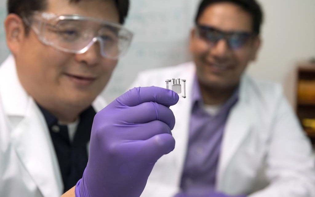 WSU researchers develop sugar-powered sensor to detect, prevent disease