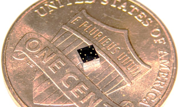 A Chip Tinier Than a Ladybug Acts As A Lung-Heart Super Sensor