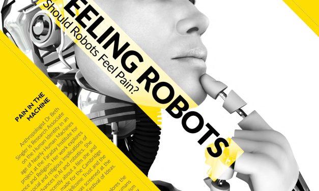 Should Robots Feel Pain?