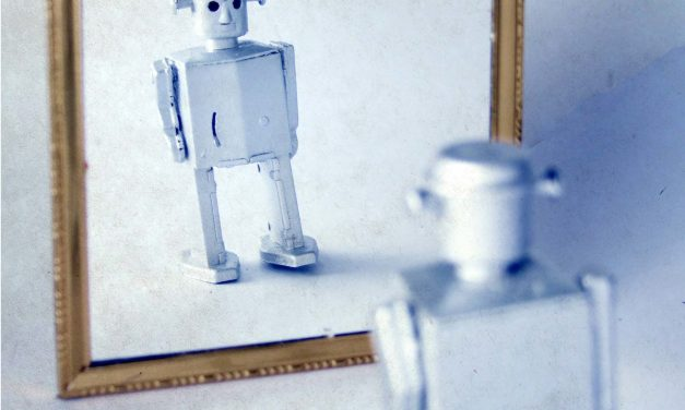 Do Robots Need A Self?