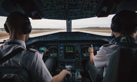 Tracing Pilots' Situation Assessment by Neuroadaptive Cognitive Modeling