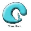 Meniscal Tear - Torn Horn