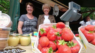 Lepkeshof - Erdbeeren aus Oberhausen