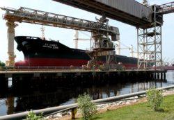 ship export trade