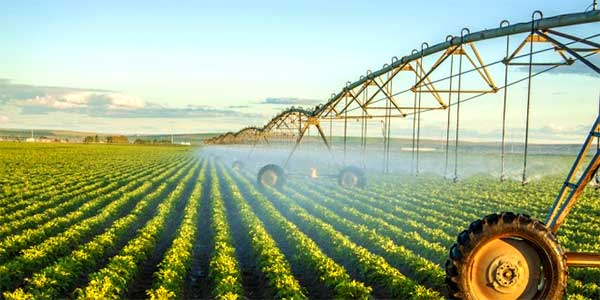 Water Irrigation and Conservation vs. Politics and Economics – AgFax