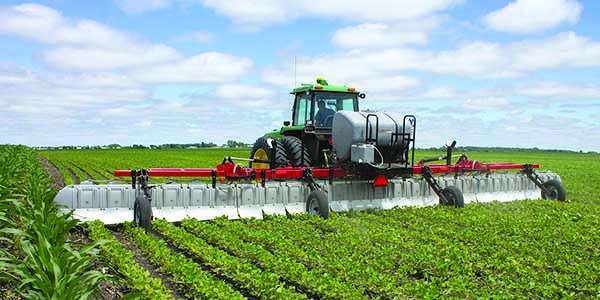 Weed Management: What's the Difference Between Herbicide