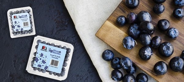 IG International Pvt. Ltd. enters global blueberry market