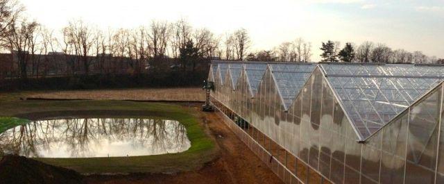 BrightFarms, Hydroponic Greenhouse Company, Raises $4.9M in Series B