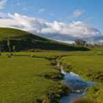 Waikato Uni Launches AgTech Fund to Disrupt NZ Agri-Business