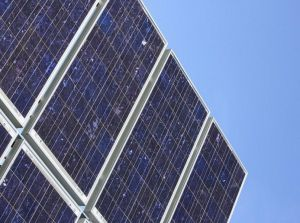 Bio-PV Cell Breakthrough May Mean Cheaper, Flexible Solar Energy Panels