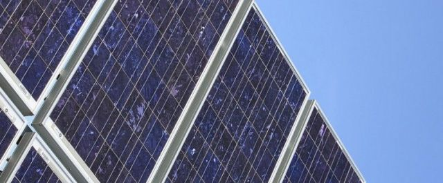 Bio-PV Cell Breakthrough May Mean Cheaper, Flexible Solar Energy Panels
