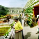 Could grandma and grandpa help urban agriculture take root in Singapore?