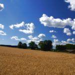 Conservis Corp, Farm Management Software, Closes a $10M Series A