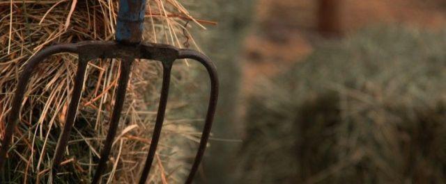 USDA Announced $16M Grant to Provide Broadband to Rural America