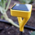 Smart Garden Sensor Startup, Edyn, Launches Kickstarter