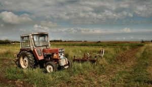Are Farmer Suicide Rates on the Rise?