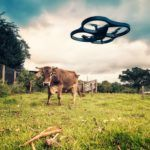 Cleantech's 'Agriculture Gets Smart' AgTech report in 600 words