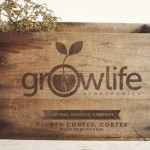 GrowLife adds to $14.5m in recent financing for mini-hydroponics