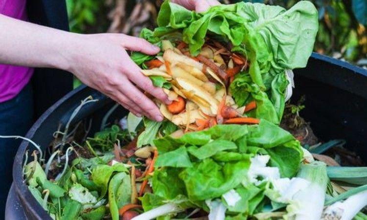 WISErg Food to Fertilizer