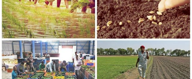 Indian VCs Discuss Agro Star Investment and Opportunities in India's Challenging Supply Chain