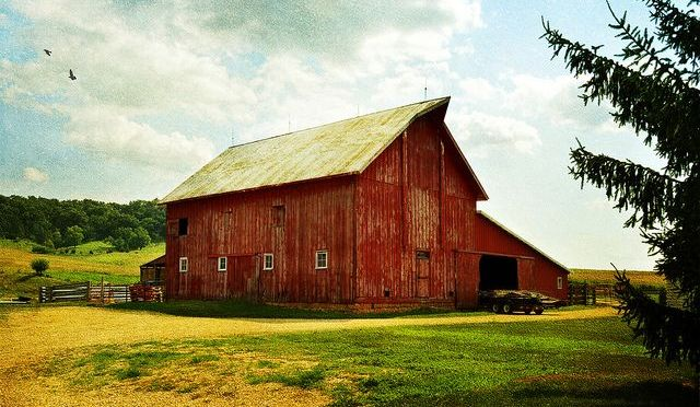 Smart Barn Attributes Winning Verizon Powerful Answers Award to Farming Language