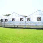 Greenhouse Company BrightFarms Closes Series B on $13.65m