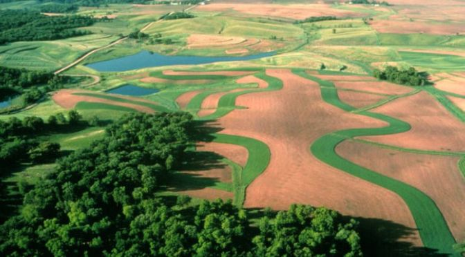 Ecological Farming A Different Form Of Agtech Exclusive Report
