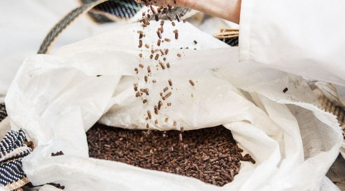 Sustainable Fish Feed Company Calysta Raises $30m Series C from Cargill, MERS Pension