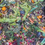 How Entrepreneurs and Investors Can Help Reduce Food Waste by 20% in 10 Years