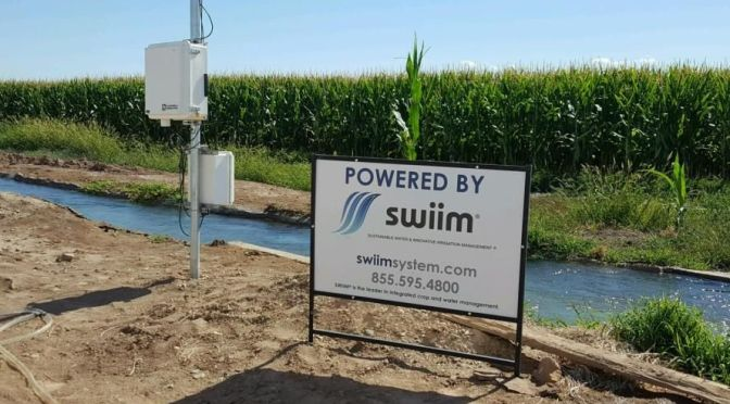 Where Are They Now? Water Tech Startup SWIIM a Year On from Series A