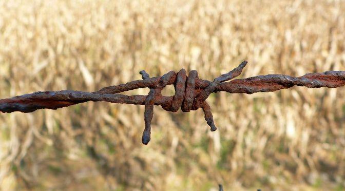 wire-196361_1280