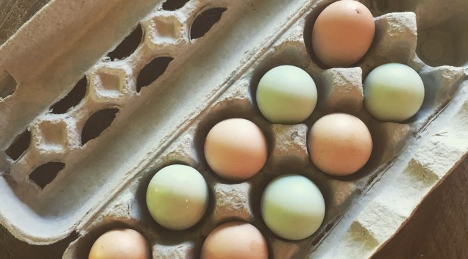 Unscrambling the Myths Around Egg Labeling at Easter