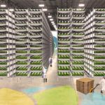 AeroFarms Raises $100m from 'Patient Capital' to Continue Steady Growth of Vertical Farming Business