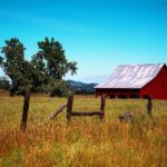 The Opportunities and Challenges of Building a Rural Agtech Startup