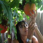 Women in Agtech: From Vietnam to Founding Redmelon Company – Le Vuong